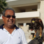 Foto de perfil de José Antonio